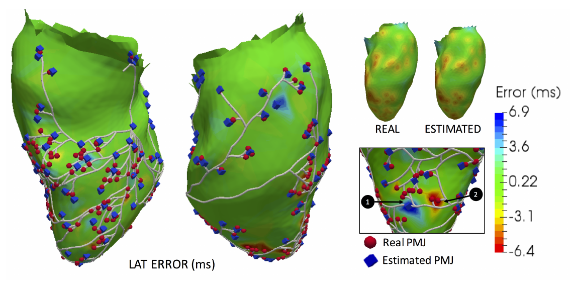 Automatic Estimation of Purkinje-Myocardial Junction hot-spots from Noisy Endocardial Samples: A simulation study