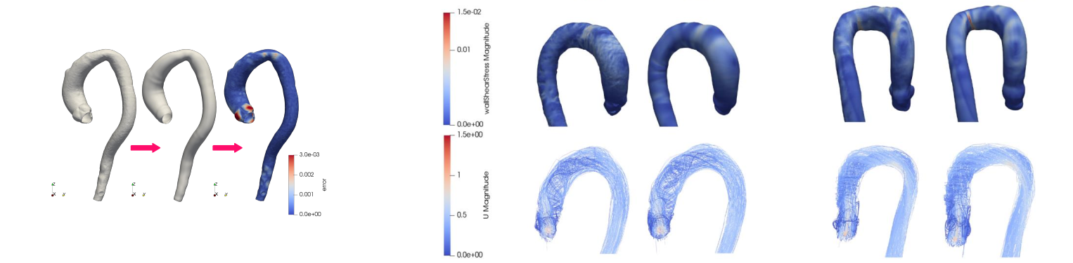 Aorta flow characterization and simulation
